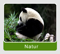 China Natur Reisen